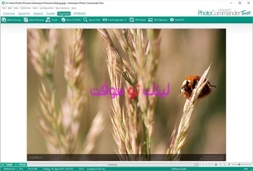 نبذة عن برنامج تعديل الصور Ashampoo Photo Commander